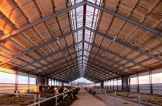 В 2020 году в Кировской области появятся пять новых молочных ферм