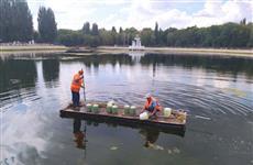 Самарские озера очистят от водорослей с помощью полезных микроорганизмов