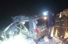 В ДТП с грузовиком под Рощинским пострадала автомобилистка