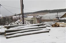 Житель Самарской области незаконно срубил 54 липы и дуба
