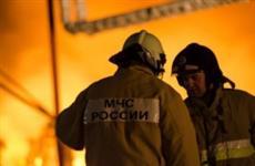 Шесть коз и 16 кур погибли во время крупного пожара в Обшаровке