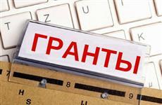 66 проектов социально ориентированных НКО получат гранты в Ульяновской области