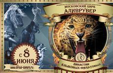 """В Самаре пройдут гастроли столичного цирка """"Аливрувер"""""""