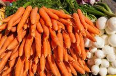 В Саратовской области снижаются оптовые цены производителей на лук и морковь