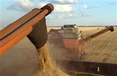 """В регионе образован """"Самарский зерновой союз"""""""
