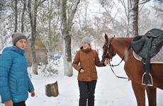 Из парка Металлургов выселяют конюшню и приют для животных