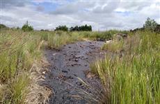 Под Сызранью в результате ДТП опрокинулась автоцистерна и произошел разлив нефти