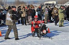 На Самарской Луке пройдет девятый международный ледовый чемпионат мира по гонкам на унимото