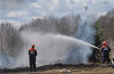 В лесах некоторых районов области установился высокий класс пожарной опасности