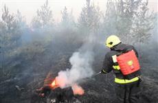 В Тольятти тушат лесной пожар
