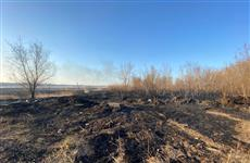 """Девять дачных строений сгорели при пожаре в СНТ """"Нефтяник"""" под Самарой"""