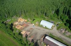 Приоритетный проект по переработке невостребованной древесины обеспечит 20 рабочих мест в селе Частые
