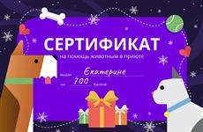 Самарцам предложили оригинальный вариант новогоднего подарка: сертификаты на помощь животным