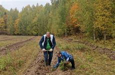 """Нижегородская область вошла втоп-5 лидеров экочеленджа вподдержку акции """"Сохраним лес"""""""