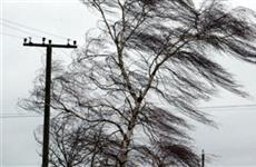 В Самарской области ожидаются порывы ветра, дождь и мокрый снег