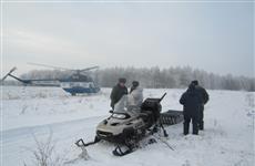 В Похвистневском районе два браконьера на снегоходе задавили кабана