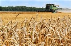В Кировской области за шесть месяцев 2021 г. на поддержку сельхозтоваропроизводителей направлено более 1 млрд рублей