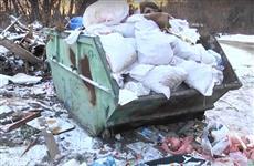 Джакузи, мусор и бомжи - что самарцы находят на незаконных свалках