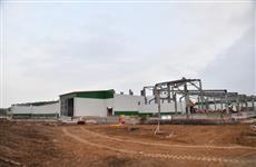 В Саратовской области будет создано производство по выпуску мяса свинины в потребительской упаковке