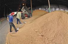 Самарская область экспортировала зерно на $10 млн
