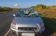 В Новокуйбышевске груз с другого автомобиля влетел в лобовое стекло Ford