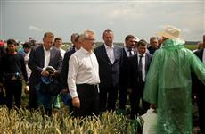 """Губернатор: """"Главам районов необходимо больше уделять внимания обучению предпринимателей агропромышленного сектора"""""""