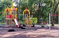 Бродячие собаки оккупировали детскую площадку на ул. Партизанской и покусали ребенка