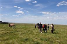 Американские и оренбургские зоологи приступают к сотрудничеству в рамках программы реинтродукции лошади Пржевальского