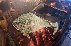 В Самарской области водитель легковушки сбил насмерть лося