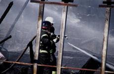 В подсобном хозяйстве в Ставропольском районе сгорели 50 кроликов и 200 перепелов