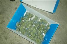 У жителя Сызрани изъяли более 2 кг марихуаны