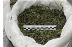 На жителя Клявлинского района заведено дело за хранение более 1 кг марихуаны