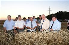 """Аграрии - губернатору: """"Средняя урожайность будет не ниже 47 центнеров с гектара"""""""