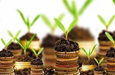 Выбираем надежный инструмент для инвестиций