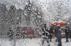 В конце рабочей недели в регионе будет -1°C, дождь со снегом и туман