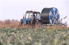 Нижегородская область рассчитывает в 2021 г. привлечь на развитие фермерства в два раза больше федеральных субсидий