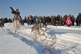 Под Самарой прошли соревнования внедорожников, квадроциклов и собачьих упряжек