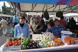 Какие продукты можно купить на главной сельскохозяйственной ярмарке Самары
