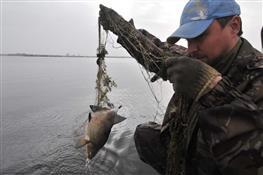 Очистить реки от браконьерских сетей можно только общими усилиями