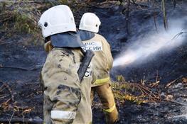 Пожар на о. Зелененький ликвидирован