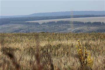 Будет разработана программа развития системы особо охраняемых природных ульяновских территорий