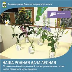 """В рамках нацпроекта """"Культура"""" в Осинском музее природы открылась выставка, посвященная Лесной даче"""