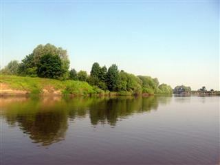 В 2021 году планируется провести расчистку реки Мокша