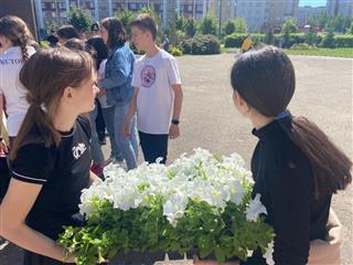 В Нижегородской области подвели итоги экологического проекта #Безбумаги