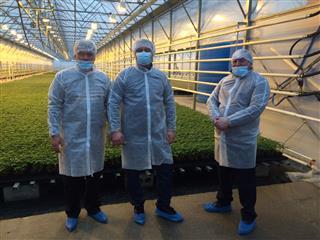 """Национальный проект """"Предпринимательство"""" пришёл на помощь сельским овощеводам"""