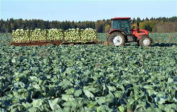 В Нижегородской области выделят 100 млн рублей на поддержку фермеров до конца лета