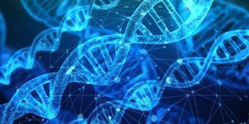 В Нижегородской области запустили пять проектов в рамках биомедицинского кластера