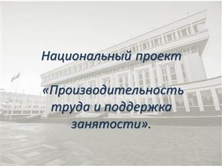 В Оренбуржье работают эксперты Федерального центра компетенций