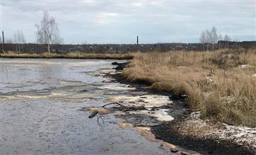 Обследование шести вновь выявленных объектов накопленного экологического вреда началось в Нижегородской области