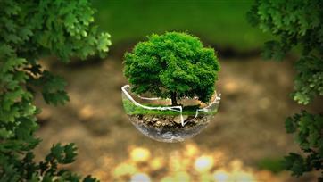 """В Ульяновской области стартовала неделя национального проекта """"Экология"""""""